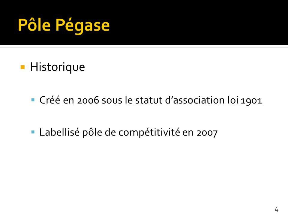 Historique Créé en 2006 sous le statut dassociation loi 1901 Labellisé pôle de compétitivité en 2007 4