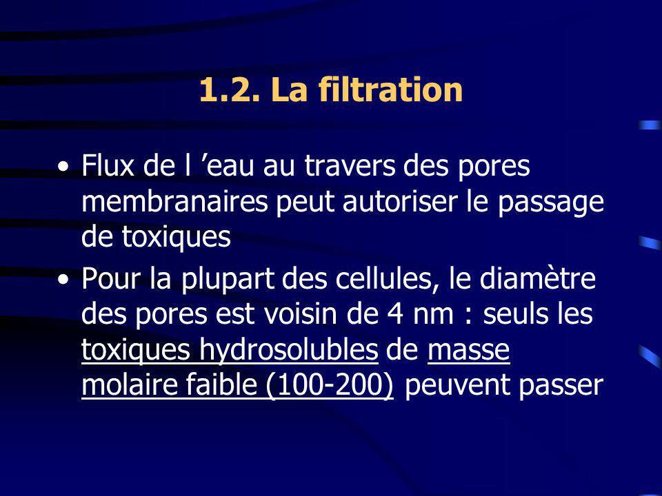 1.2. La filtration Flux de l eau au travers des pores membranaires peut autoriser le passage de toxiques Pour la plupart des cellules, le diamètre des