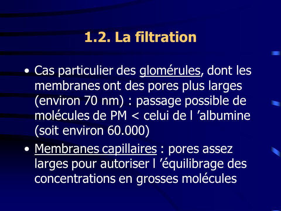 1.2. La filtration Cas particulier des glomérules, dont les membranes ont des pores plus larges (environ 70 nm) : passage possible de molécules de PM