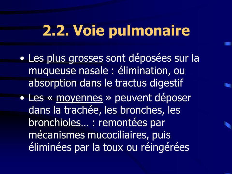 2.2. Voie pulmonaire Les plus grosses sont déposées sur la muqueuse nasale : élimination, ou absorption dans le tractus digestif Les « moyennes » peuv