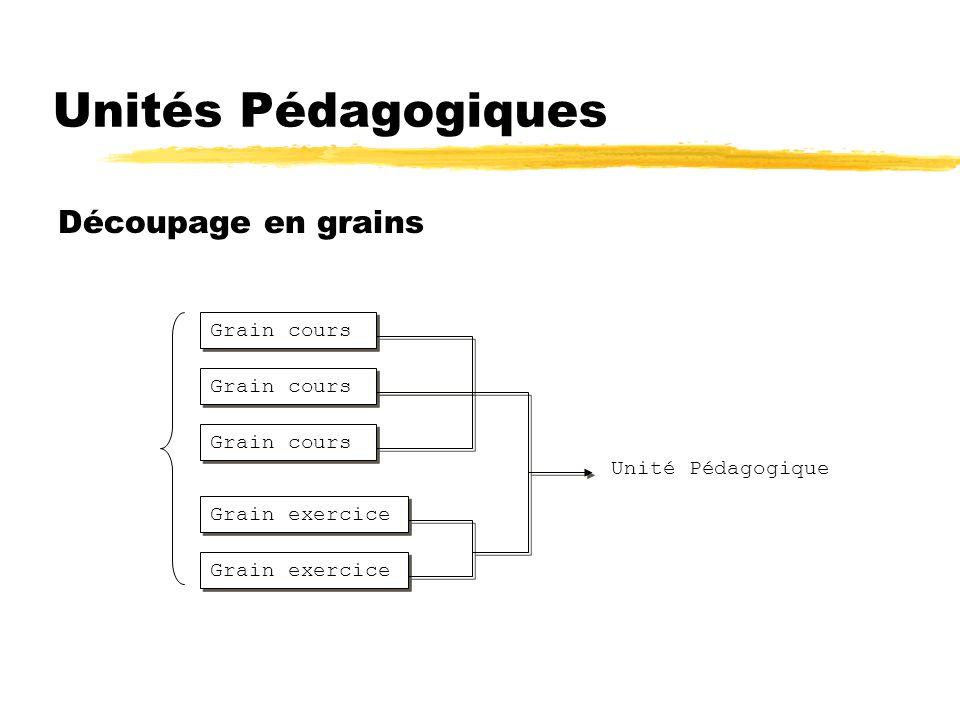 Unités Pédagogiques Découpage en grains Grain cours Grain exercice Grain cours Grain exercice Grain cours Unité Pédagogique