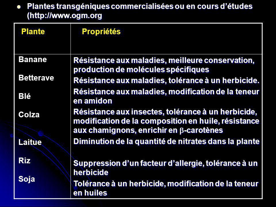 Plantes transgéniques commercialisées ou en cours détudes (http://www.ogm.org Plantes transgéniques commercialisées ou en cours détudes (http://www.og