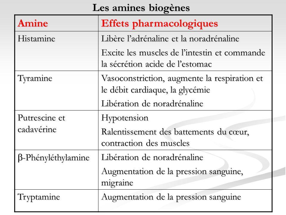 Les amines biogènes Amine Effets pharmacologiques Histamine Libère ladrénaline et la noradrénaline Excite les muscles de lintestin et commande la sécr