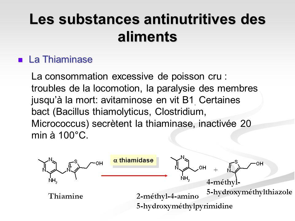 Les substances antinutritives des aliments La Thiaminase La Thiaminase thiamidase + Thiamine2-méthyl-4-amino 5-hydroxyméthylpyrimidine 4-méthyl- 5-hyd