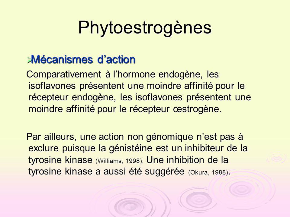 Phytoestrogènes Mécanismes daction Mécanismes daction Comparativement à lhormone endogène, les isoflavones présentent une moindre affinité pour le réc