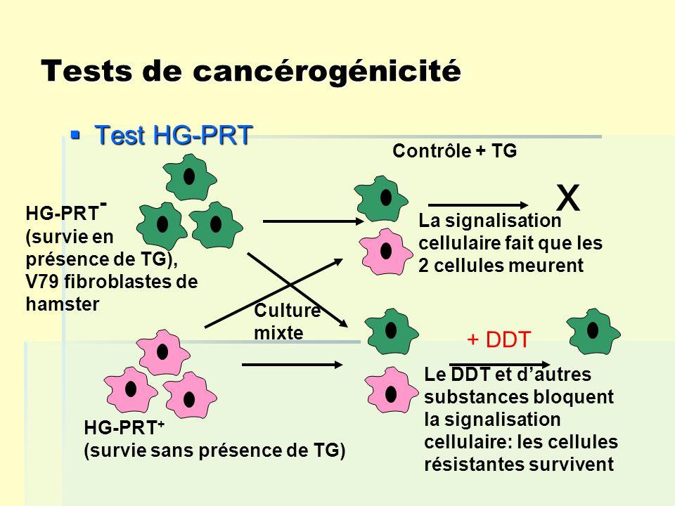 Tests de cancérogénicité Test HG-PRT Test HG-PRT x La signalisation cellulaire fait que les 2 cellules meurent Le DDT et dautres substances bloquent la signalisation cellulaire: les cellules résistantes survivent + DDT Culture mixte Contrôle + TG HG-PRT + (survie sans présence de TG) HG-PRT - (survie en présence de TG), V79 fibroblastes de hamster
