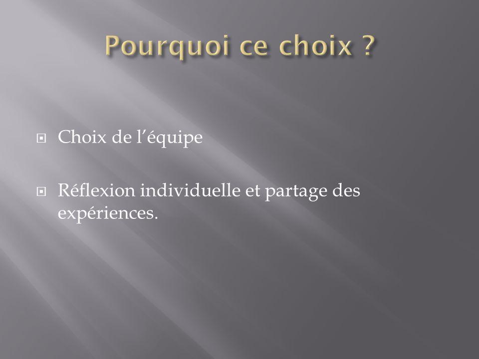 Choix de léquipe Réflexion individuelle et partage des expériences.