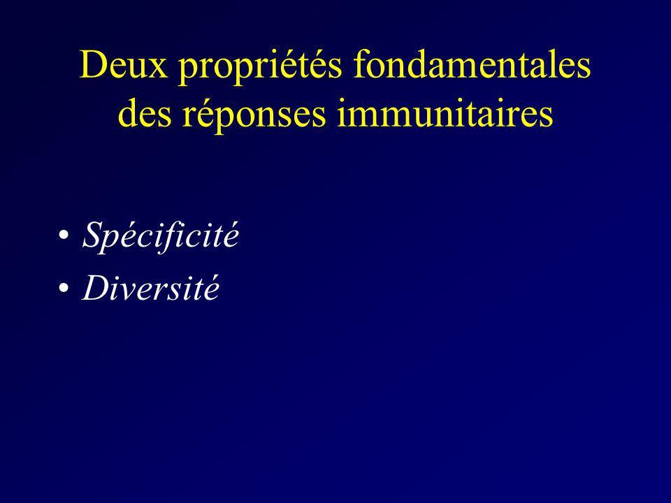 Deux propriétés fondamentales des réponses immunitaires Spécificité Diversité