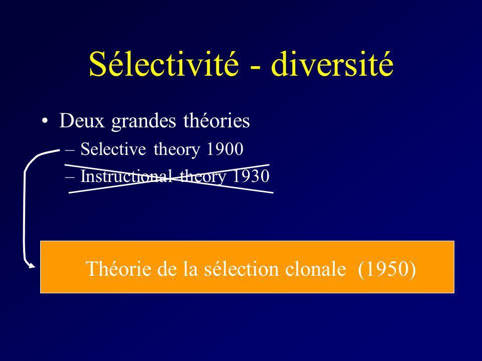 Sélectivité - diversité Deux grandes théories –Selective theory 1900 –Instructional theory 1930 Théorie de la sélection clonale (1950)