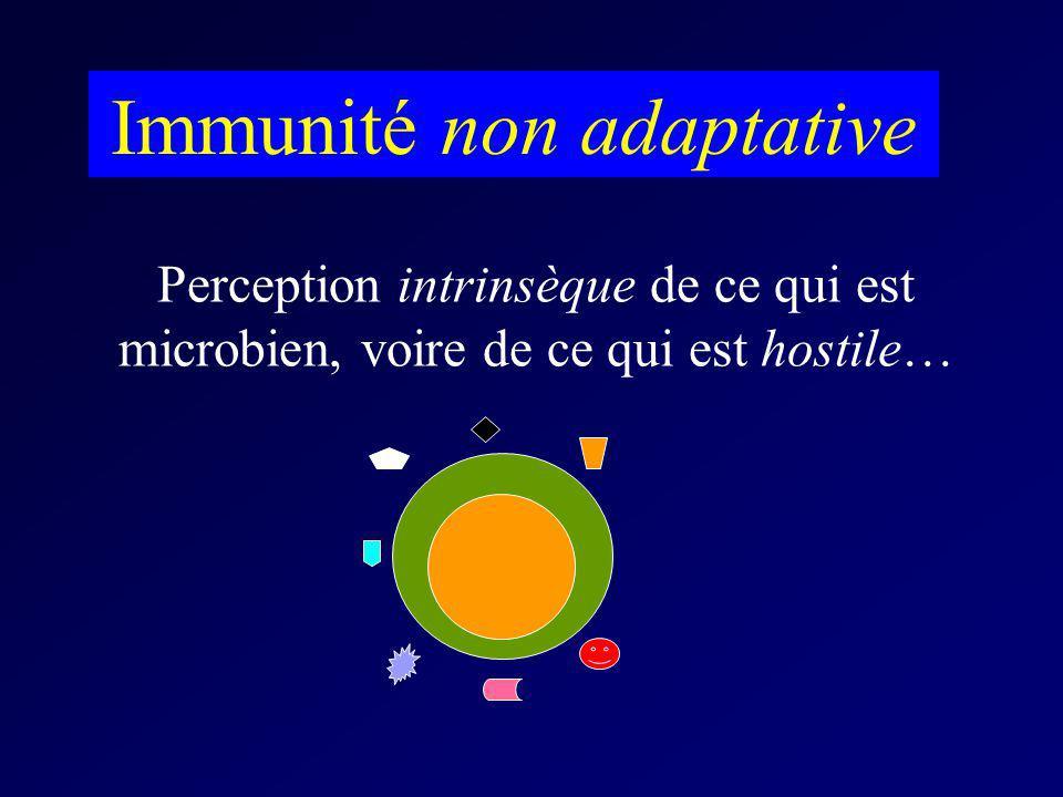 Perception intrinsèque de ce qui est microbien, voire de ce qui est hostile… Immunité non adaptative