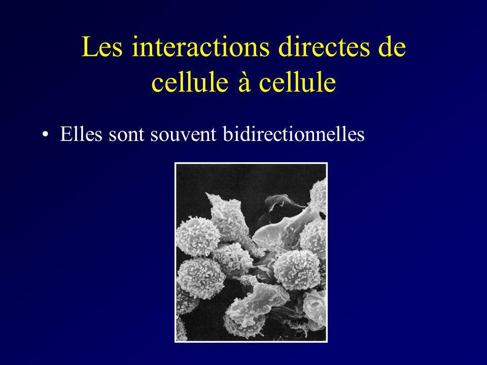 Les interactions directes de cellule à cellule Elles sont souvent bidirectionnelles