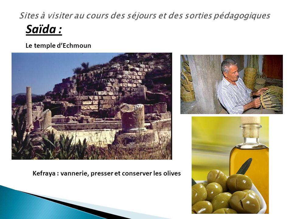 Le temple dEchmoun Kefraya : vannerie, presser et conserver les olives Saïda :