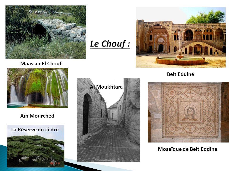 Maasser El Chouf La Réserve du cèdre Beit Eddine Mosaïque de Beit Eddine Al Moukhtara Aïn Mourched