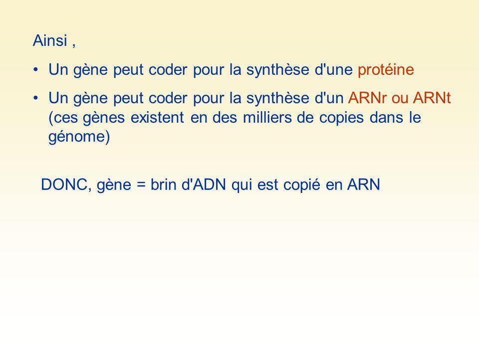Ainsi, Un gène peut coder pour la synthèse d'une protéine Un gène peut coder pour la synthèse d'un ARNr ou ARNt (ces gènes existent en des milliers de