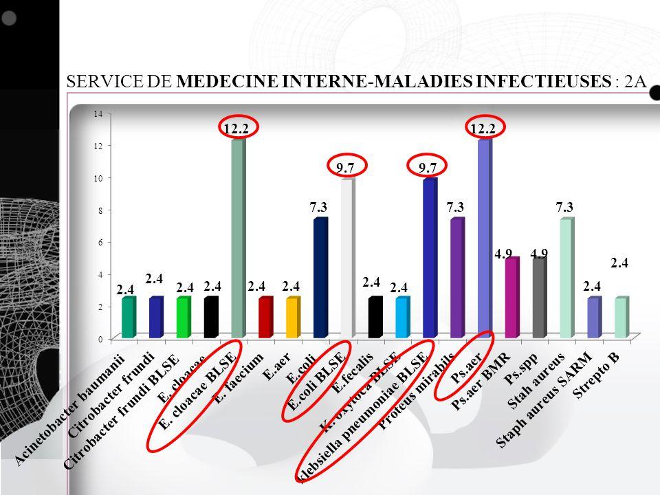 SERVICE DE MEDECINE INTERNE-MALADIES INFECTIEUSES : 2A