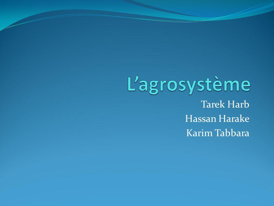 Tarek Harb Hassan Harake Karim Tabbara