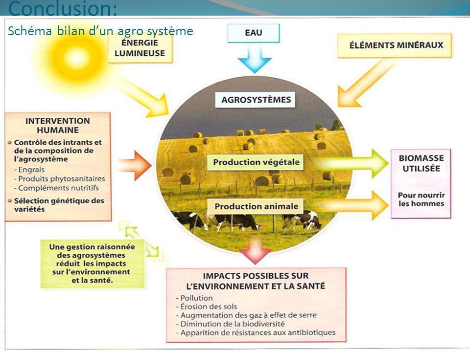 Conclusion: Schéma bilan dun agro système