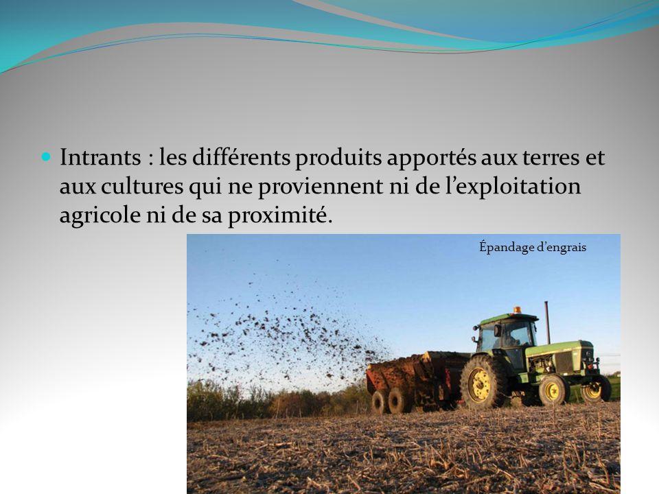 Intrants : les différents produits apportés aux terres et aux cultures qui ne proviennent ni de lexploitation agricole ni de sa proximité. Épandage de