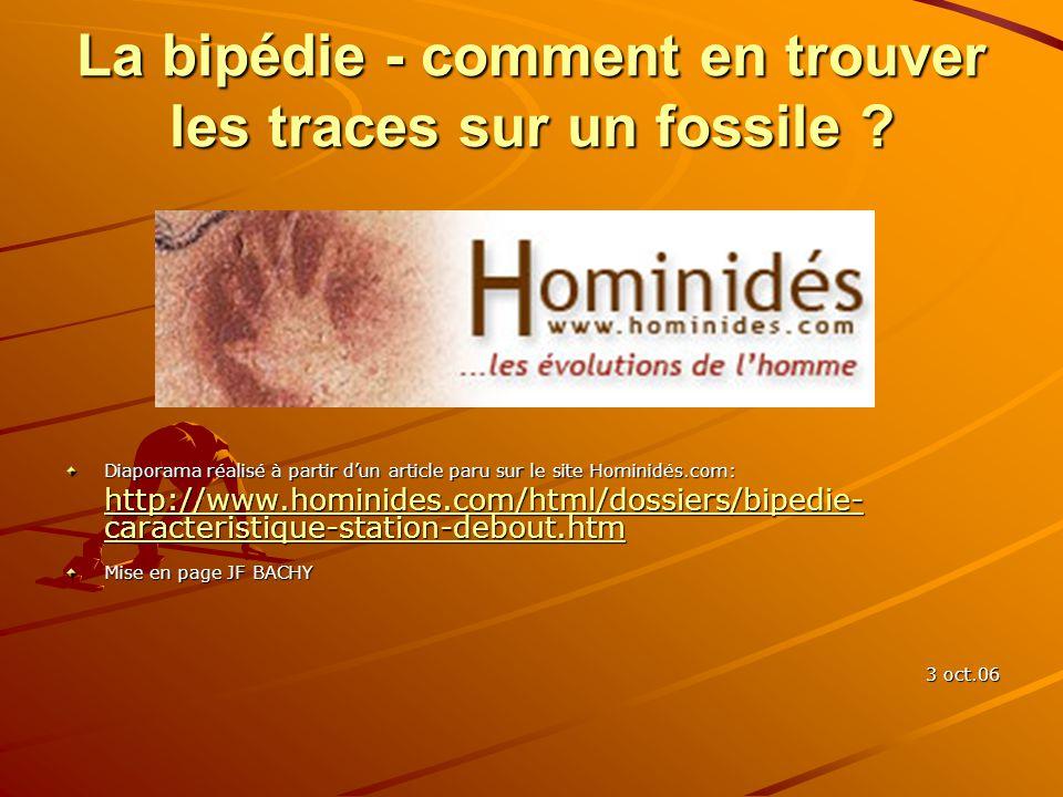 La bipédie - comment en trouver les traces sur un fossile ? Diaporama réalisé à partir dun article paru sur le site Hominidés.com: http://www.hominide