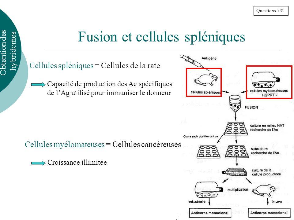 Fusion et cellules spléniques Cellules spléniques = Cellules de la rate Obtention des hybridomes Cellules myélomateuses = Cellules cancéreuses Questions 7/8 Capacité de production des Ac spécifiques de lAg utilisé pour immuniser le donneur Croissance illimitée