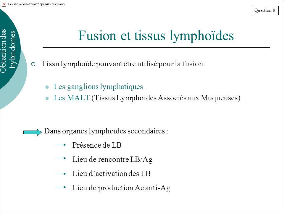 Fusion et tissus lymphoïdes Tissu lymphoïde pouvant être utilisé pour la fusion : Les ganglions lymphatiques Les MALT (Tissus Lymphoides Associés aux Muqueuses) Obtention des hybridomes Dans organes lymphoïdes secondaires : Présence de LB Lieu de rencontre LB/Ag Lieu dactivation des LB Lieu de production Ac anti-Ag Question 8