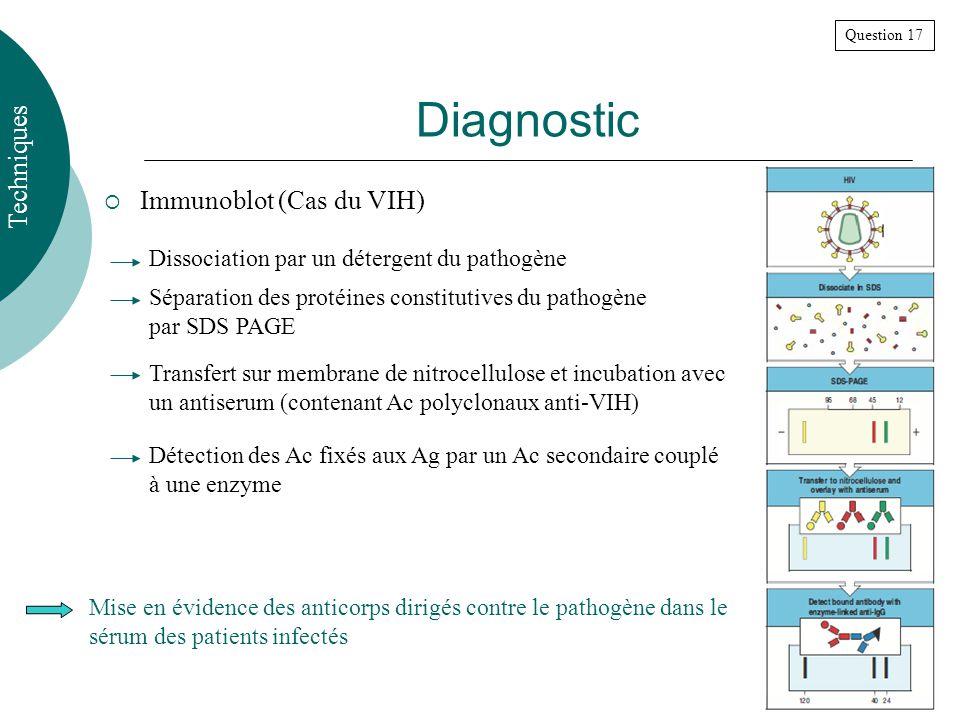 Diagnostic Immunoblot (Cas du VIH) Techniques Question 17 Dissociation par un détergent du pathogène Séparation des protéines constitutives du pathogène par SDS PAGE Transfert sur membrane de nitrocellulose et incubation avec un antiserum (contenant Ac polyclonaux anti-VIH) Détection des Ac fixés aux Ag par un Ac secondaire couplé à une enzyme Mise en évidence des anticorps dirigés contre le pathogène dans le sérum des patients infectés