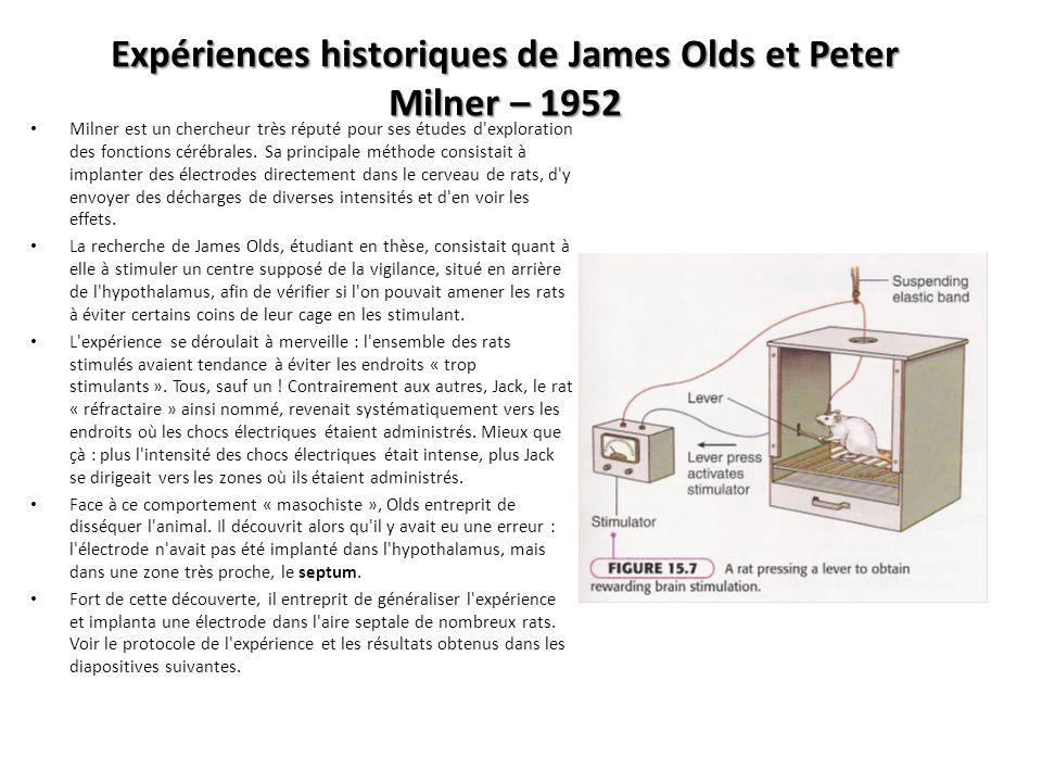Expériences historiques de James Olds et Peter Milner – 1952 Milner est un chercheur très réputé pour ses études d'exploration des fonctions cérébrale