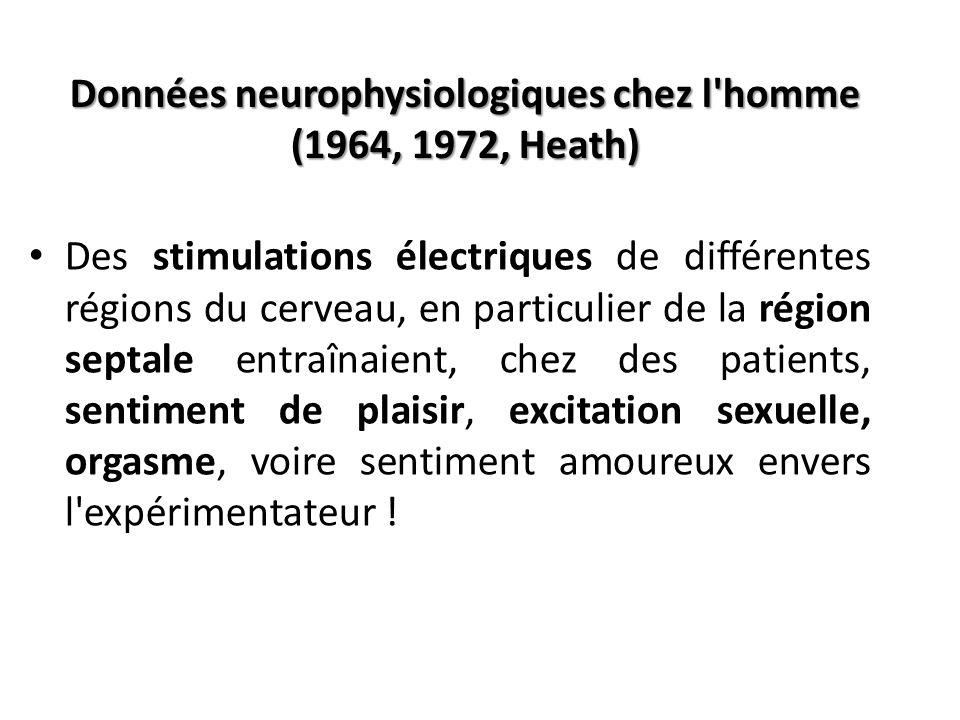 Données neurophysiologiques chez l'homme (1964, 1972, Heath) Des stimulations électriques de différentes régions du cerveau, en particulier de la régi