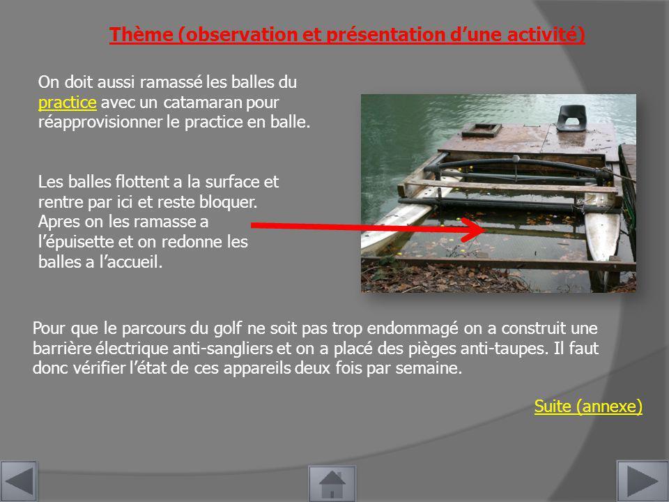 Thème (observation et présentation dune activité) On doit aussi ramassé les balles du practice avec un catamaran pour réapprovisionner le practice en balle.