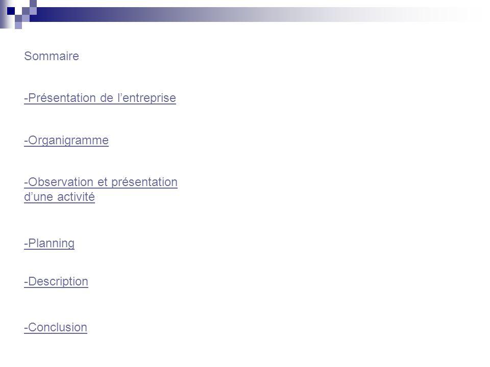 -Présentation de lentreprise Sommaire -Organigramme -Observation et présentation dune activité -Planning -Description -Conclusion