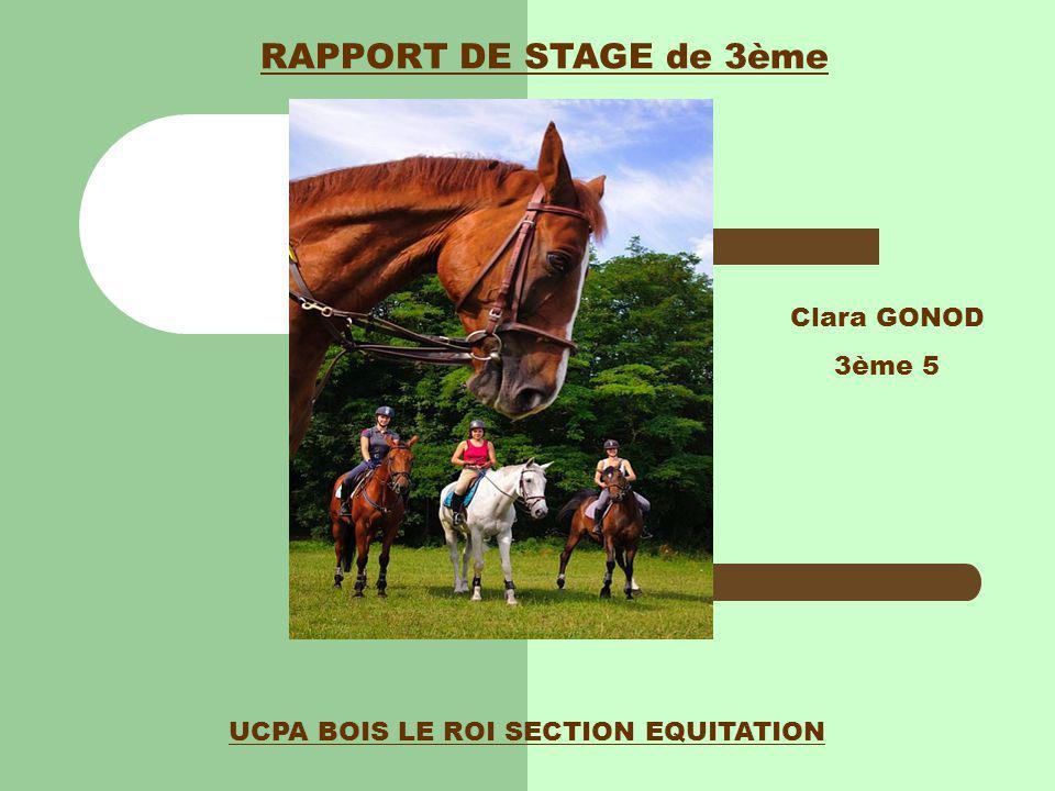UCPA BOIS LE ROI SECTION EQUITATION Clara GONOD 3ème 5 RAPPORT DE STAGE de 3ème