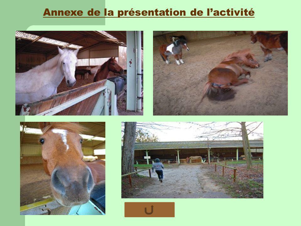 Annexe de la présentation de lactivité