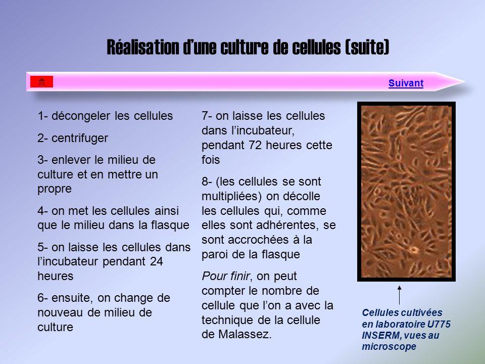 Réalisation dune culture de cellules (suite) 1- décongeler les cellules 2- centrifuger 3- enlever le milieu de culture et en mettre un propre 4- on me
