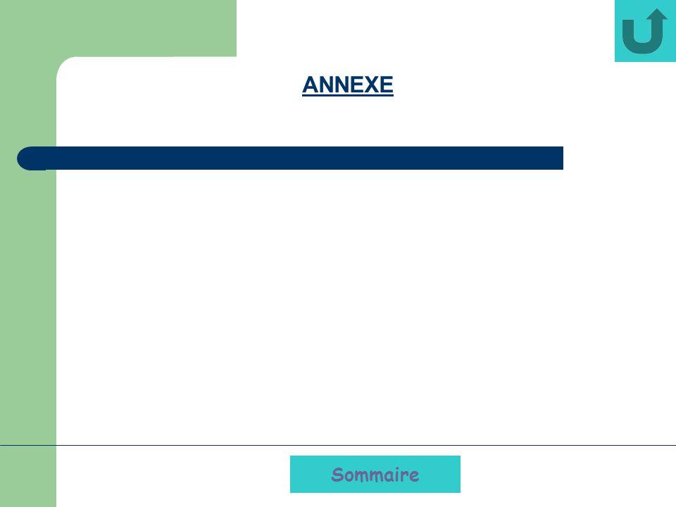 Sommaire ANNEXE