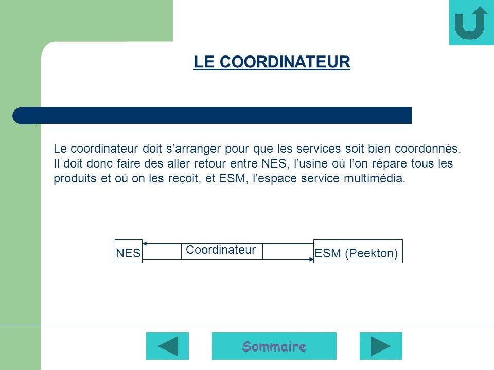 Sommaire ESM (Peekton)NES Le coordinateur doit sarranger pour que les services soit bien coordonnés.
