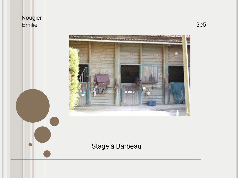 Nougier Emilie 3e5 Stage à Barbeau