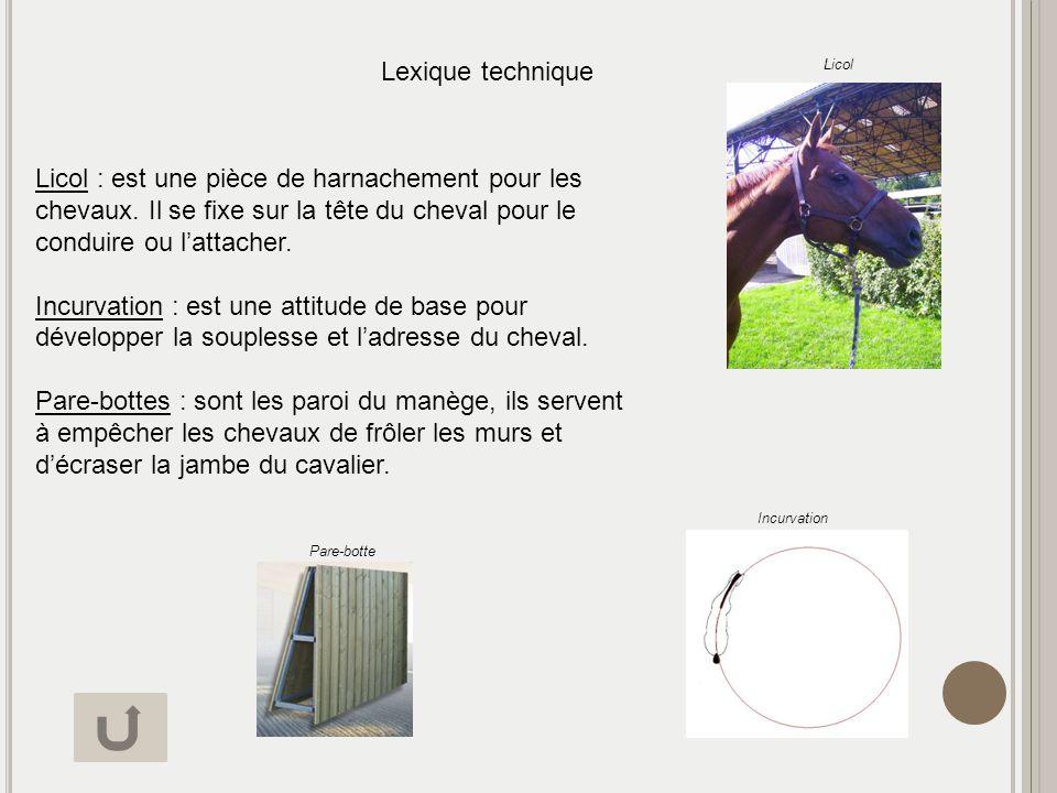 Lexique technique Licol : est une pièce de harnachement pour les chevaux. Il se fixe sur la tête du cheval pour le conduire ou lattacher. Incurvation