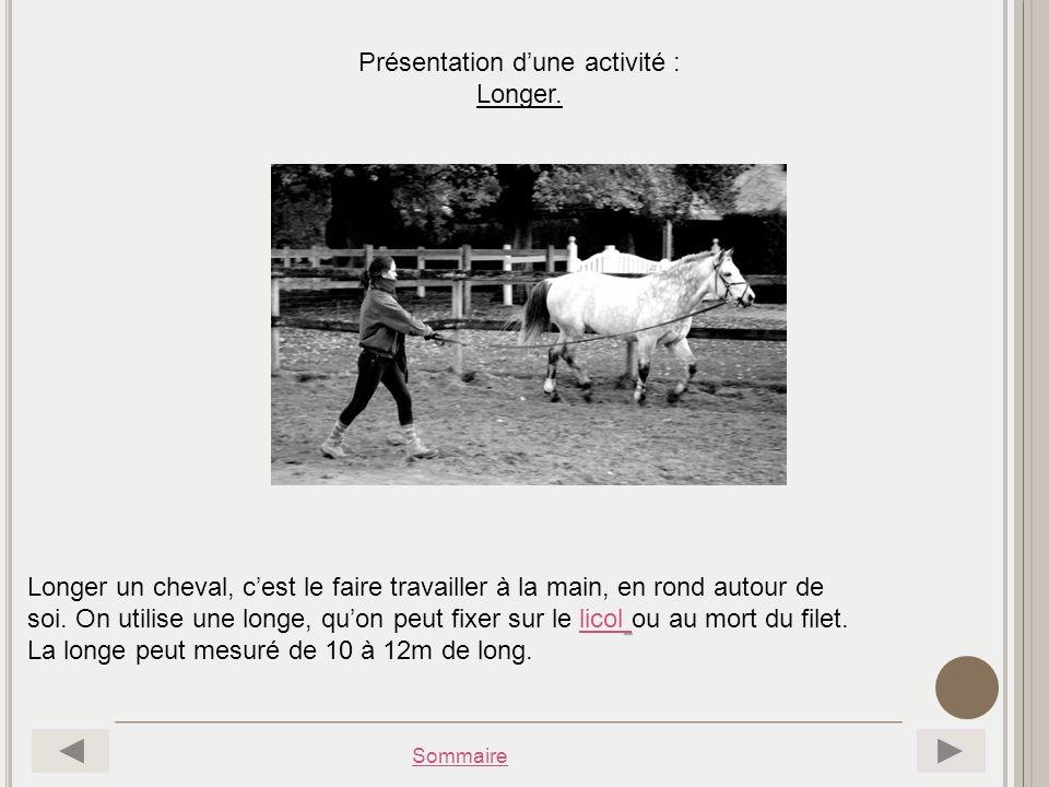 Sommaire Présentation dune activité : Longer. Longer un cheval, cest le faire travailler à la main, en rond autour de soi. On utilise une longe, quon