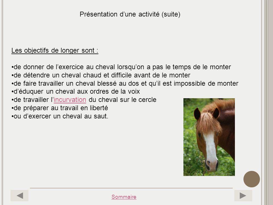 Sommaire Présentation dune activité (suite) Les objectifs de longer sont : de donner de lexercice au cheval lorsquon a pas le temps de le monter de dé
