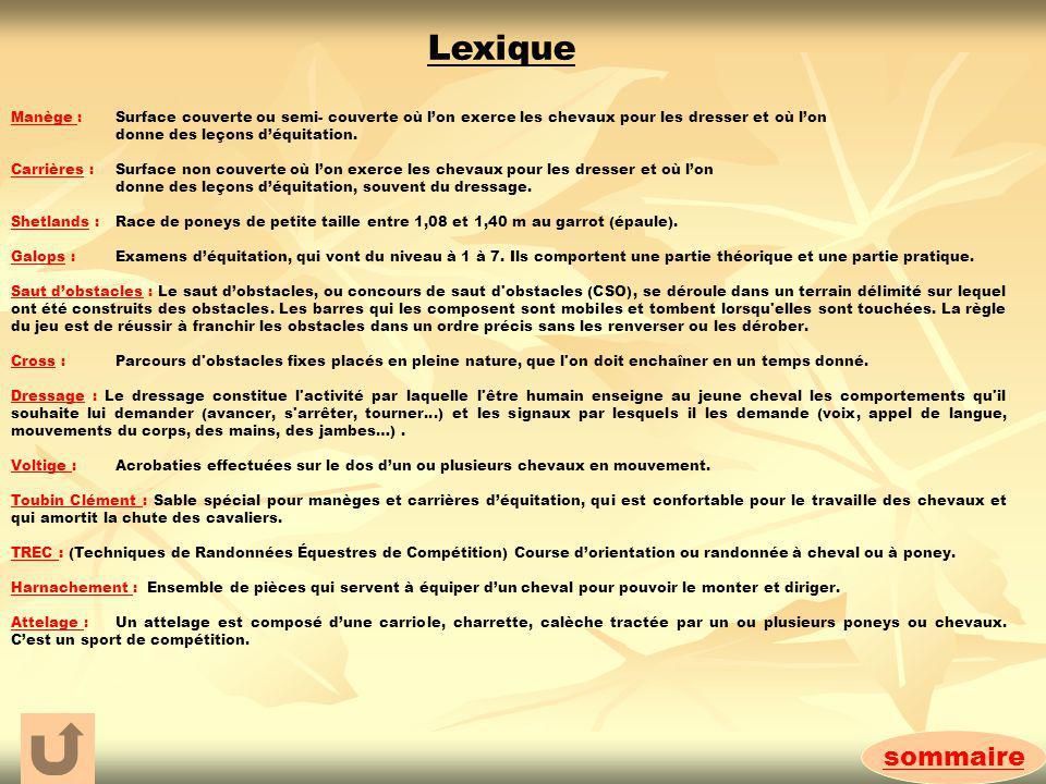 sommaire Lexique Manège : Surface couverte ou semi- couverte où lon exerce les chevaux pour les dresser et où lon donne des leçons déquitation. Carriè