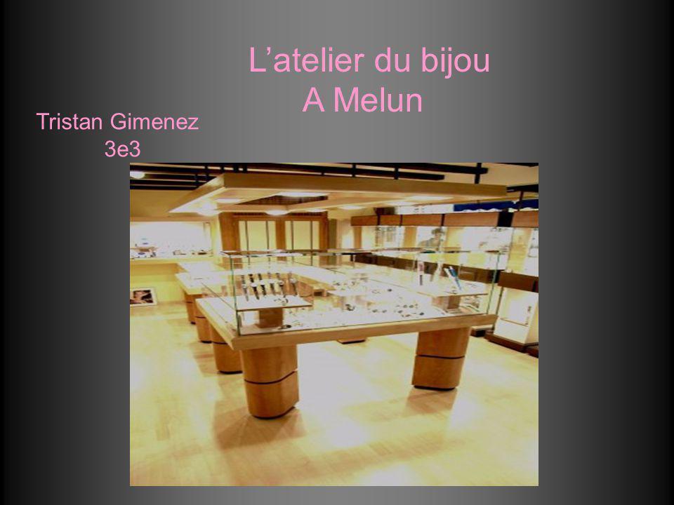 Latelier du bijou A Melun Tristan Gimenez 3e3