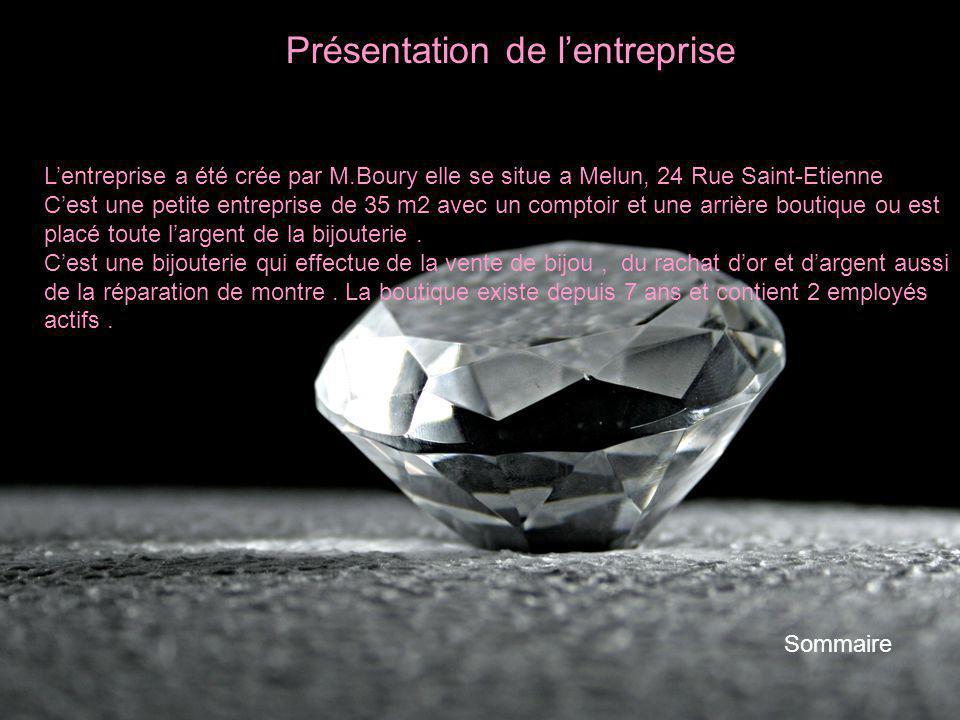 Présentation de lentreprise Sommaire Lentreprise a été crée par M.Boury elle se situe a Melun, 24 Rue Saint-Etienne Cest une petite entreprise de 35 m
