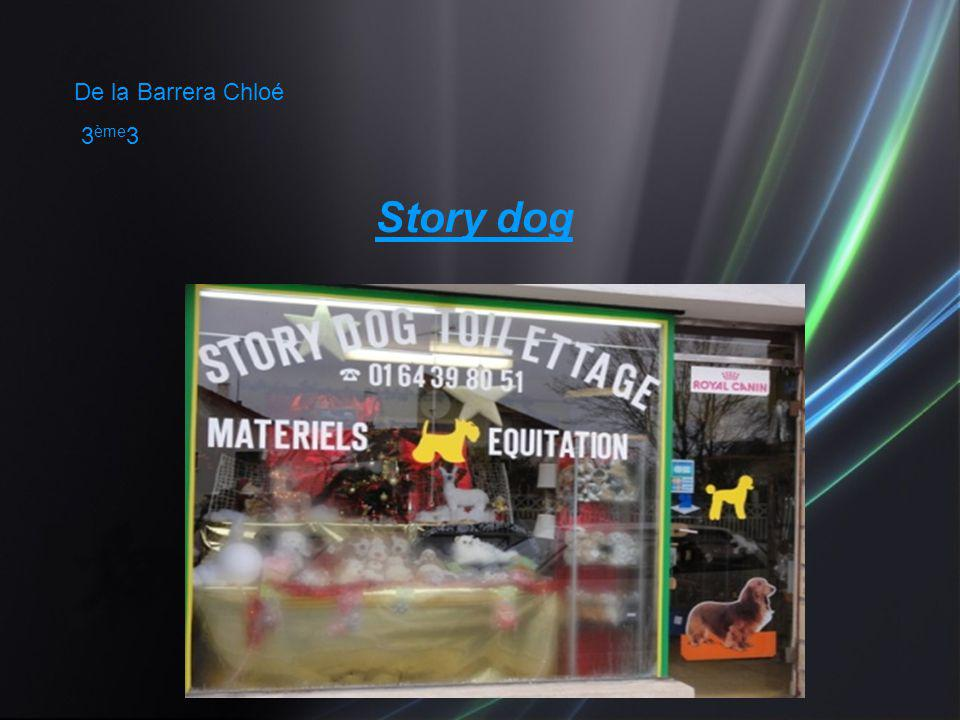 De la Barrera Chloé 3 ème 3 Story dog