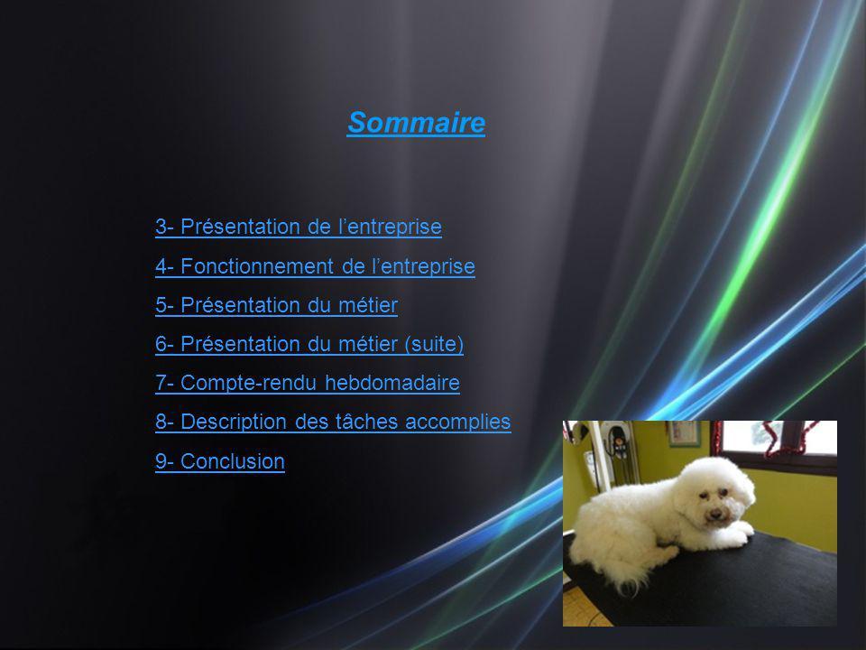 Sommaire 3- Présentation de lentreprise 4- Fonctionnement de lentreprise 5- Présentation du métier 6- Présentation du métier (suite) 7- Compte-rendu h