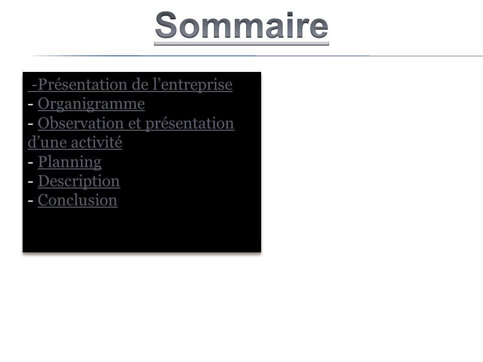 -Présentation de lentreprise - OrganigrammeOrganigramme - Observation et présentation dune activitéObservation et présentation dune activité - Plannin