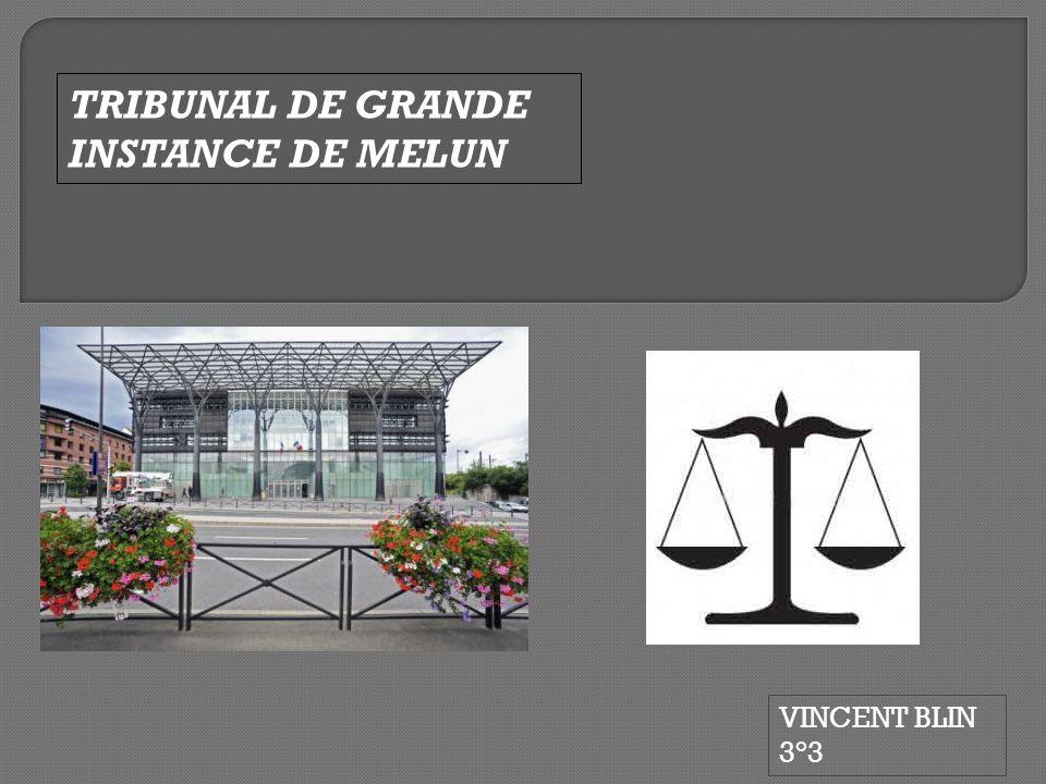 VINCENT BLIN 3°3 TRIBUNAL DE GRANDE INSTANCE DE MELUN