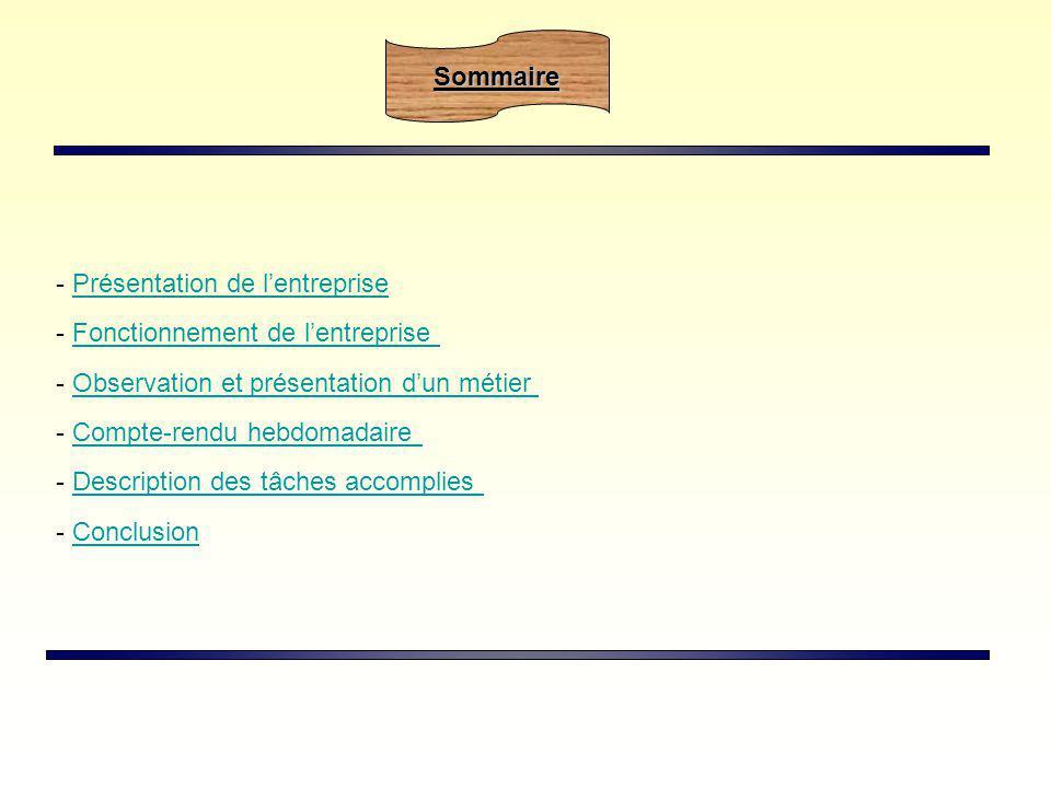 - Présentation de lentreprisePrésentation de lentreprise - Fonctionnement de lentrepriseFonctionnement de lentreprise - Observation et présentation du