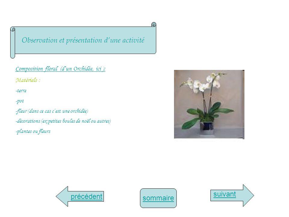 sommaire Observation et présentation dune activité suivant précédent Composition floral (dun Orchidée, ici ): Matériels : -terre -pot -fleur (dans ce