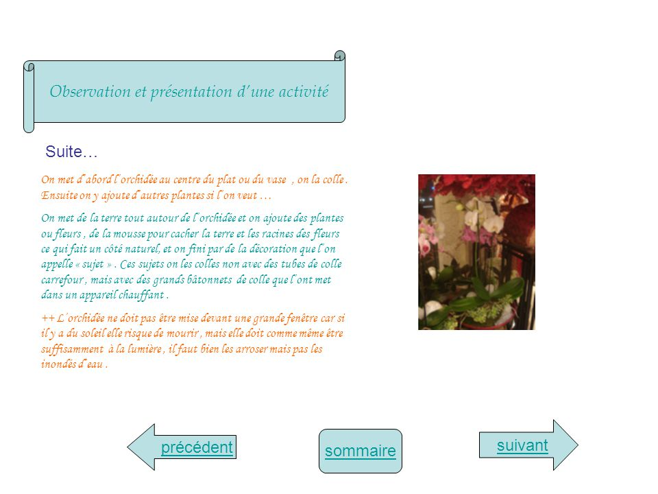 sommaire Compte-rendu hebdomadaire suivant précédent MardiMercrediJeudiVendredi -extraction dépines des roses avec une serpette puis des feuilles morte.serpette -extraction soigneusement des pétales de rose pour ensuite les vendre.