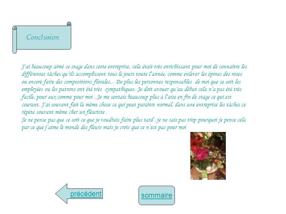 Annexe du thème détude choisi Petit sapin de décoration/sapin miniature: Serpette : Composition dOrchidée: Arrière boutique: